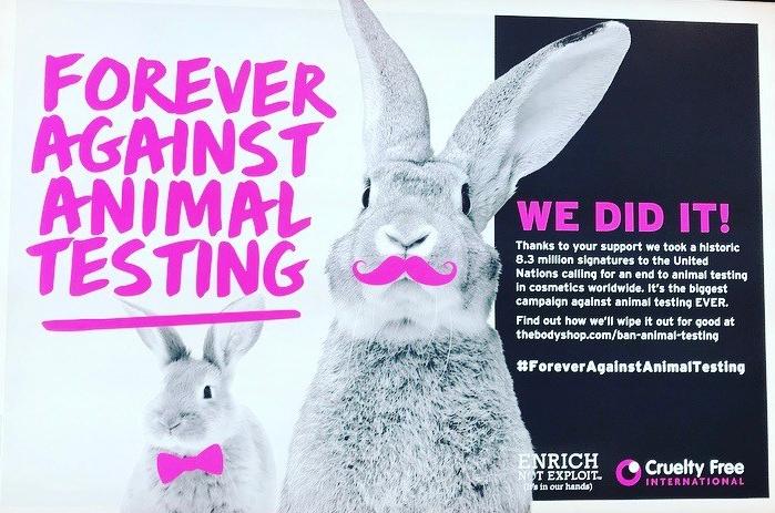 animal-testing-ban.jpg